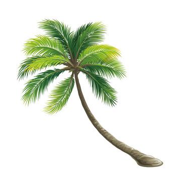 椰子树风景矢量海报设计图片欣赏图片