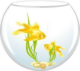 图片CAD鱼缸鱼缸_图片CAD大全素材下载_高靠怎么cad赚钱图片