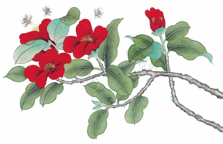 红花绿叶工笔画